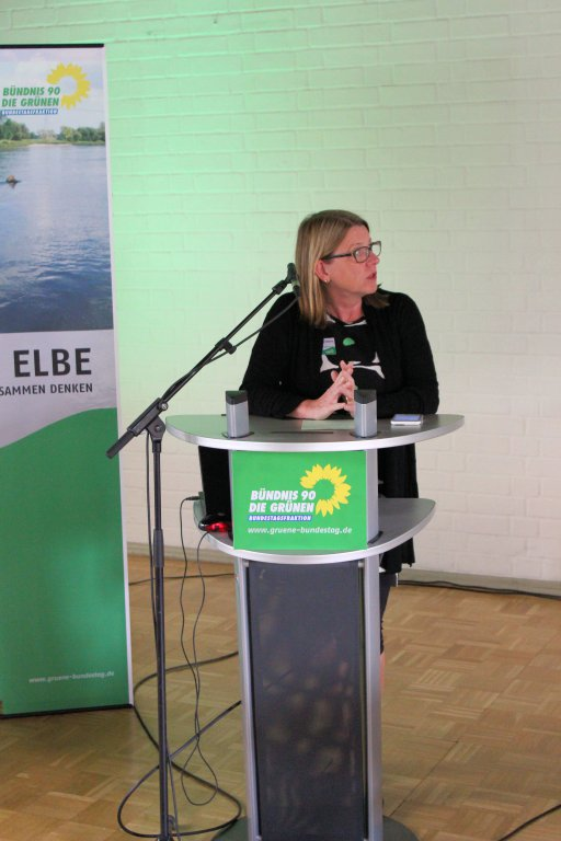 Elbetagung 26.06.2015 Magdeburg - Claudia Dalbert